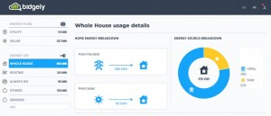 Bidgely Whole House Usage Details - solar